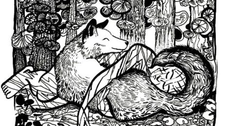 Wolf Fur and the Spirit of Healing