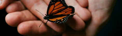 self harm, Mental Health, butterfly project, mental illness, recovery, art, coping, awareness, self care, depression