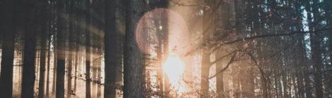 sound, soundscape, bon iver, justin vernon, folk rock, woods, blood bank, music, isolation, loneliness, alone, pain, beauty, redemption, acapella, experimental, mental health