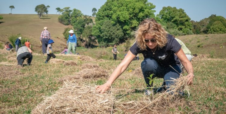 Woman volunteering, planting a tree.